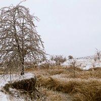 Ледяной пейзаж :: Рубен Диланян