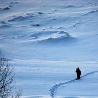 Томь :: Alexsandr Bove
