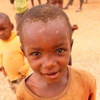 Африка. Ботсвана :: Владимир Ильин