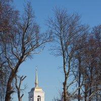 Церковь Михаила Архангела :: Олег Лебедев