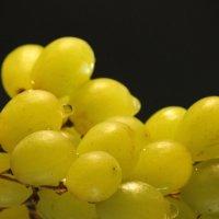 Веточка винограда :: Александра Синяева