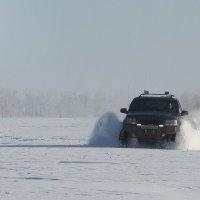 Поле, зима,... :: Andrey Dikiy