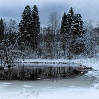 На реке... :: Любовь Анищенко