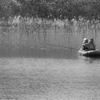 на реке :: Galina G