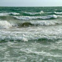 Море. :: сергей лебедев