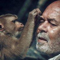 Посмотри друг что то в глаз попало? :: Юрий Кащенко