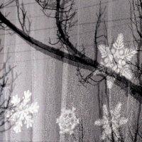 снежинки на окне :: Мария Климова