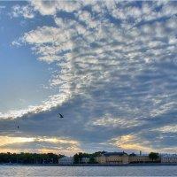 Птица небесная развернула крыла :: Елена Slychainaya