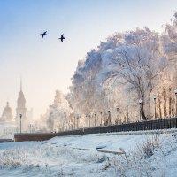 Дмитрий Земсков - Крещенский мороз :: Фотоконкурс Epson