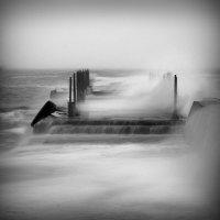 У природы нет плохой погоды (с) :: Anri Croizet