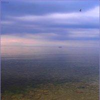 Море :: Александр