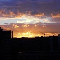 Вечернее небо :: Оля Ковалева