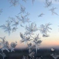 Зима на окне :: Сергей Тимоновский