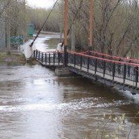 Потоп :: Алла Рыженко
