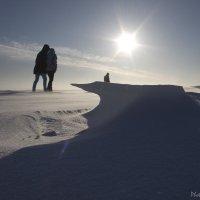 как на северном полюсе :: Igor Topchiev