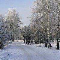 Зима :: Анна S