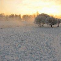 Зима :: максим лыков
