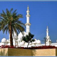 Мечеть Шейха Заеда :: Евгений Печенин
