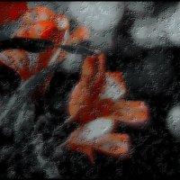 "Борис Пастернак / "" Недотрога, тихоня в быту... "" :: Victor Vinocurov"