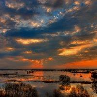 Ранним утром на разливе. :: Nikita Volkov
