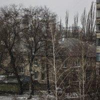 а за окном зима :: Геннадий Свистов