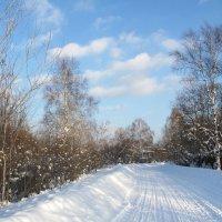 Зимняя дорога :: Нина северянка
