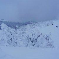 Зима на Демерджи :: Сергей Опарин