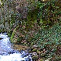 Горная речка :: Sanari Denrei