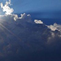 лучи солнца :: Оля Ковалева