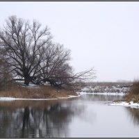 Зимняя пастораль :: Ирина Голубева