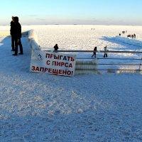 Это зимний Одесский юмор!!! :: Николай Кононцев
