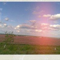 On the Way Home :: Юля