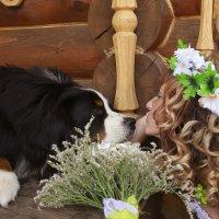 ...а теперь поцелуйте невесту :: Валерий Анохин