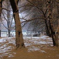 зима :: Александр Юшков