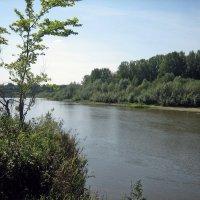 Протока Кадыш в Башкирии :: Владимир Арефьев