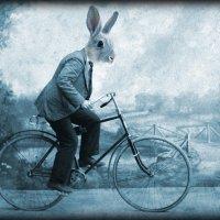 Rabbitbike :: Наталья Голдина