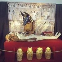 выставка Египетские мумии из глубины веков :: Сергей Кочнев
