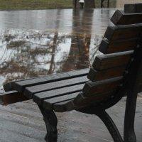 Пасмурная погода :: Евгения Фирстова