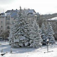 и на юге бывает снег :: Мария Климова