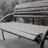 Недавний снег :: Дмитрий Бернадский