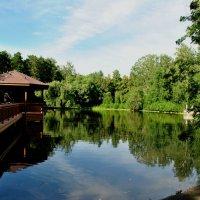 Лебединое озеро :: Маргарита Кретова