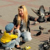 Они не кусаются, сынок! :: Игорь Юрьев