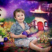 волшебный лес :: фотостудия шоколад