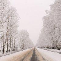 Вот такая дорога.. :: Александр Герасенков