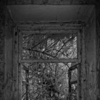 Окно времени :: Denis Aksenov