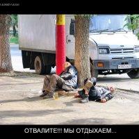 Отдых на центральной улице :: Алексей -