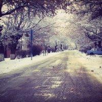 зима :: Наташа Бойко