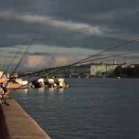 Городская рыбалка :: Annie Kuzz