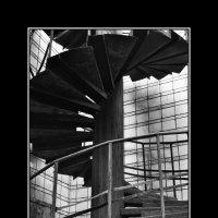 лестница :: Ольга Степанова