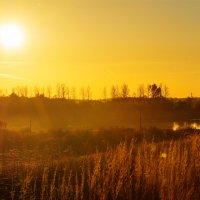 Шумилинское озеро. Бабье-лето. Октябрь-2012. :: Анатолий Клепешнёв